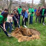 ".@UTPresident Sharon L. Gaber, an urban planner w/ deep respect for green space, tells the crowd, ""Happy Arbor Day!"" https://t.co/HwsCGlXuLq"