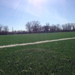 Beautiful turf field here in Winnipeg, home of Bonivital Soccer Club @pdm_29 @PattyHajdu @CityThunderBay @ShelbyChng https://t.co/UU329vH3m1