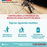 Controlemos la presencia del Mosquito Aedes aegypti https://t.co/GFejIFJ6Qx