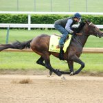 Exaggerator breezes 5F in 1:02.60. Splits 12.80, 25.20, 37.80, 50.40 & out 1:15.60, 1:29.60. #KyDerby (Coady Photo) https://t.co/Lr4vs9fX28