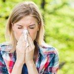 Las 10 cosas que nadie sabe sobre los estornudos https://t.co/o3HOIBB0E6 https://t.co/8hZsyMk89D