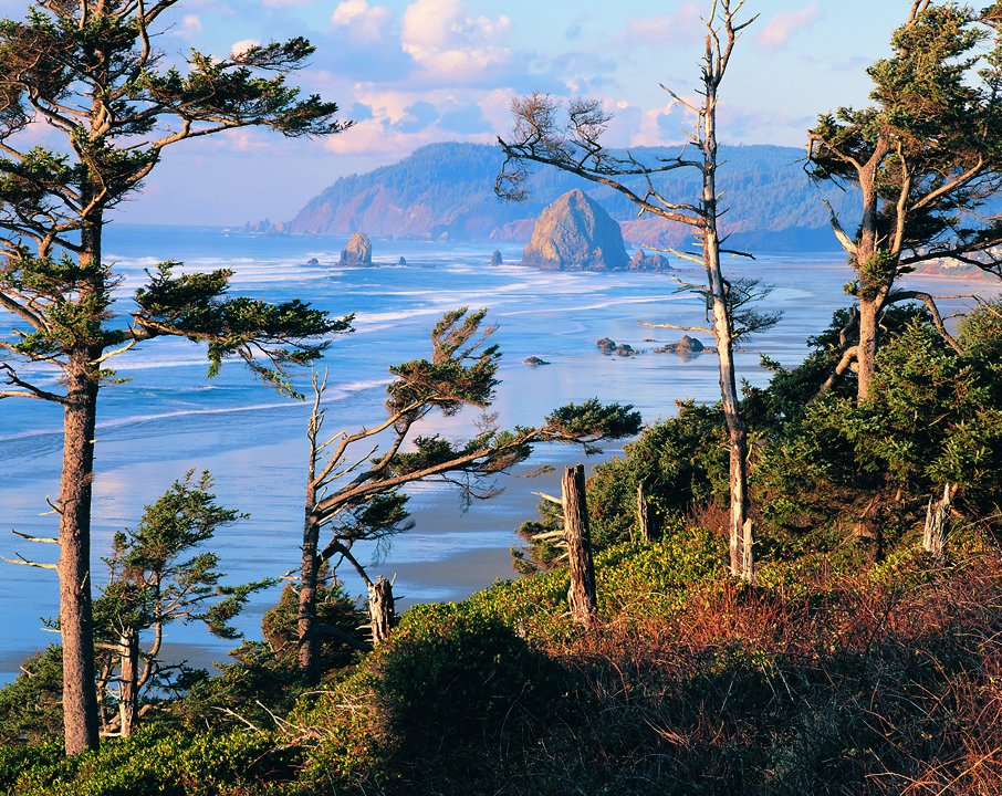#VIEWS from the Oregon Coast.