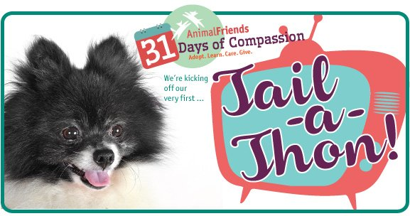 Tonight at 7 p.m. we're kicking off 31 Days of Compassion with our Tail-a-Thon on @WPXI. Don't miss it! https://t.co/hC2hthllMO