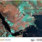 أجواء غائمة جزئيا مع استمرار الفرص لأمطار خفيفة متفرقة حتى ساعات الليل. #قطر https://t.co/7cDj5uTfo0