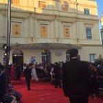 "Tras una alfombra muy ""silvestre"" cerramos el #19FestivalMalaga https://t.co/oW94MszRym"