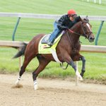 Brodys Cause worked 5F in 1:00.20. Splits 11.60, 23.40, 35.40, 47.40 & out 1:13.40, 1:28.20. #KyDerby (Coady Photo) https://t.co/TbB0lhelDt