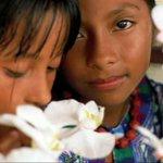 #FelizDiaDelNiño ¿Sabías que en México hay 39.2 millones de menores de edad? Eso equivale al 33% de la población. https://t.co/ik5lGL8uTX