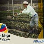 Feliz día del trabajo a los obreros de #ZamoraChinchipe y la Patria entera. A levantar a #Ecuador #1deMayoSolidario https://t.co/rsWxQsHbcS
