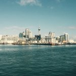 #auckland Harbour bliss @LocalAuckland https://t.co/NdTEnL83z9