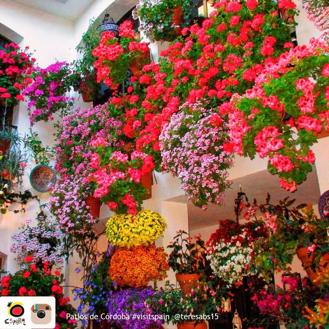 アンダルシア州のコルドバの町では、パティオ祭りが開催中です。南スペインの力強い陽光を受けた花々で旧市街のパティオは色鮮やかに彩られます!5月15日まで。 https://t.co/EnZyx4TqEf
