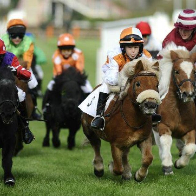 Fancy a family days racing today? https://t.co/EJBwsyX6ec https://t.co/18PW3jbonR