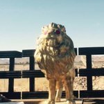 Our stolen lion has been recovered! Its now in @lvmpds possession #publicart https://t.co/4598TsE2US