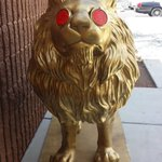 The Golden Lion was found abandoned in a desert area this weekend, and taken to a Metro substation. #8NN https://t.co/dMiW8auUhp