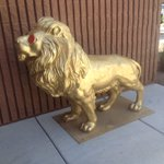 In the jungle, the mighty jungle, the stolen lion was found. Metro still hunting for suspect(s) https://t.co/3SNfWeMa98