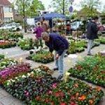 7 mei: Groenmarkt WG Volkstuinen op Petuniaplein en bij Westenhage https://t.co/dZ2YIijW5p https://t.co/94KKZiWxWg