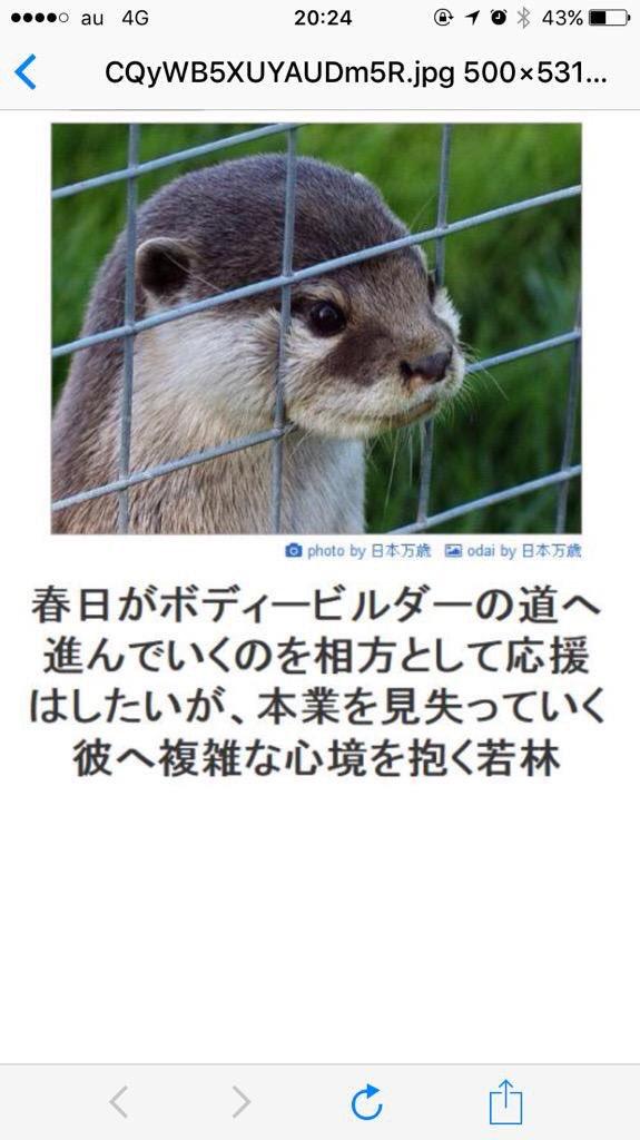 からのコレ https://t.co/iP3iiK5XKn
