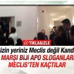 Mecliste Biji Serok Apo Diye Slogan Atan HDPliler, Sizin Yeriniz Meclis Değil Kandil, Defolun Gidin.. https://t.co/pl5NfyMc1H