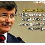 Pelikanın derdine düşenler! Yine1vatandaşımız hayatını kaybetti IŞİDden nezaman hesap sorulacak? #güvenmiyorum https://t.co/xte2d5RTwQ