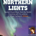 Our Northern Lights #concert with the #Haga Motettkör is on Friday in #Canterbury. #live music #worldpremiere https://t.co/olojkzkytL