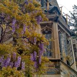 Even a rainy day is beautiful in Princeton Photo by: @brittannba https://t.co/cBvgQLNRaw