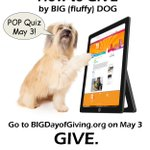 Its easy to give. Donate to the Powerhouse today - https://t.co/hsYfJWmFhU #BIGDoG2016 #ShareThePower #meme https://t.co/9WAmFBquAY