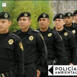Evitan tala inmoderada y basureros clandestinos en lugares protegidos como Los Dinamos ¡Conócelos! Policía Ambiental https://t.co/49WMfwUXIR