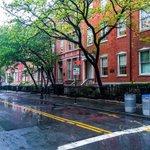 Washington Square Park by @mitzgami #newyork #nyc https://t.co/j3QknKZpZ0