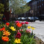 Treat mom to an awesome day! 5 Things to Do For {Mothers Day} in #Hoboken: https://t.co/oYe6v0yeyj https://t.co/UzUHmDSYm7