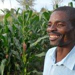 I am proud to be a farmers simply because i feed the nation #Tanzania @belinda_baraka @anzishaprize @tum_baraka https://t.co/TzEqPMoMvj