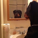 when you start catching feelings and you have to reevaluate who you really are https://t.co/v33Jp50ZCD