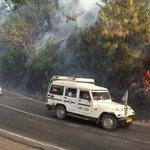 Himachal forest fires: Commuters face tough time near Solan https://t.co/BZLUqCf2qv https://t.co/A0LiYo40qq