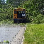 DEVELOPING: Tree falls on @wsfcs bus. Thankfully, no one was injured. @WFMY https://t.co/tmtXtZKNg8