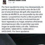 Muñeca se perdió en calle 8va Brisas del Golf. Recompensa llamar 6869 0915 ó 6083 6812 Favor RT Familia sufre Ayuda https://t.co/nse9tO0PIX