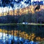 Escápate a los bosques del Zembo en Hidalgo: camping y ecoturismo muy cerca del la CDMX https://t.co/aKmwJhBxBk https://t.co/QjBpCM55wm