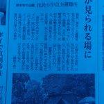 熊本日日新聞様に取材して頂き、当自主避難所の活動を本日4日朝刊にご掲載頂きました!美人記者さんがお越しになられ、男ヤモメの飯場に一輪の花が(笑)ありがとうございます!宮崎睦他一同も喜んでおります! #古城堀端公園 #熊本地震 https://t.co/6Vg2xXJTpI