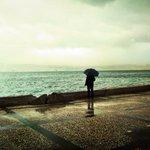 Okyanusta ölmez de insan, gider bir kaşık sevdada boğulur.  - Cemal Süreya https://t.co/reBbkMVq3k