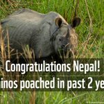 Something for which the entire country, #Nepal, to be proud of. Zero poaching #Rhinos in Nepal. #AnimalFriendlyNepal https://t.co/IFcsR7rXIF