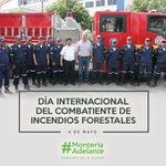 En el día del #CombatienteDeIncediosForestales gracias a los que con valor protegen nuestras zonas verdes https://t.co/B4FG7DKnqH