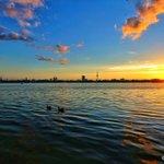 Hach... #Hamburg!  Sunset Alster! Einfach schönste Stadt der Welt... https://t.co/54Zd0bzaxh