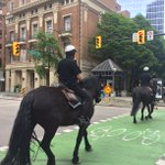 Nothing says Vancouver like a couple of police horses sharing the downtown bike lanes | #veryvancouver https://t.co/0zojIiVFvz