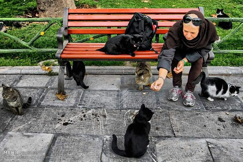 Mellat Park, #Tehran, #Iran https://t.co/hXRmBJ0yf6