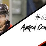 Captain Fantastic @aaronconnolly10 is the first player back for the Bison in 2016/17! More news at noon! https://t.co/EKA24hcNdx