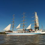 Elbe - jetzt! #Hafengeburtstag #Hamburg https://t.co/xQLmrm7hQS