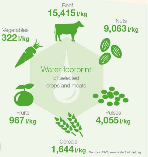 Do you know how much fresh #water is needed to produce some of the #food we consume? Check out our #infographic! https://t.co/Z6uHPdCthg