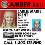 Were escalating our efforts to find this missing child and have just issued an #AMBERAlert. https://t.co/4Ao89w3k15