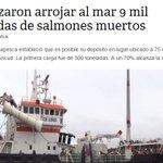 Arrojar una colilla al suelo: Multa de $ 44.000 Arrojar 9 mil toneladas de salmones muertos al mar: Multa de $ 0 https://t.co/606y4MzQQV