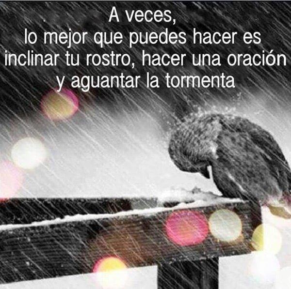 #HayDiasEnLosQue  Dios No Te Quita La Tormenta, Pero Te Ayuda a Resistir! @PanchoLocutor  @SoyKarlaPanini https://t.co/wmBc2pJc4Q