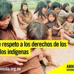 Exige a @KeikoFujimori y @ppkamigo que respeten los derechos de los pueblos indígenas https://t.co/9bvICYX8Cs https://t.co/nmIPfnMs9H