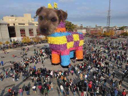 #nipclub #chilipawty pinata anyone! teehee https://t.co/HBYmdXY0X7