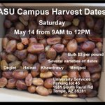 ASU Campus Harvest Dates Saturday May 14 from 9AM to 12PM Bulk $3 per pound https://t.co/WigaxxjCSY